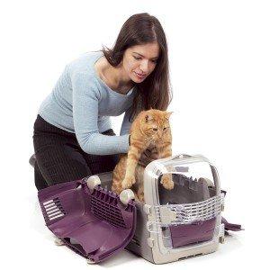 transportin-gato-abierto