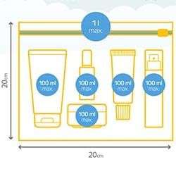 727f480d0 En general, los objetos punzantes, los líquidos, los geles y las armas solo  pueden transportarse en la bodega del avión.